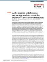 Arctic seabirds and shrinking sea ice: Egg analyses reveal the importance of ice-derived resources